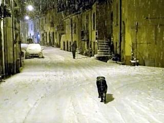 """Nevica e ... """"un cane"""" ..."""