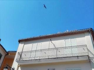 Un uccello rapace nel cielo di Sant'Andrea di Conza