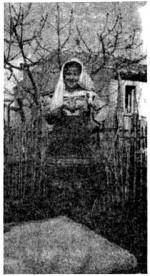 La foto della pacchianella contenuta nell'articolo originale