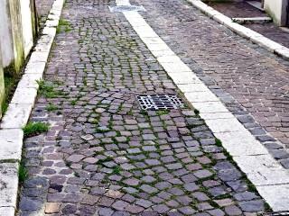 Erba tra i cubetti in Corso Mazzini
