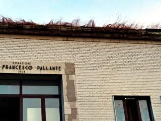 Il giardino pensile sul Municipio Pallante (3)